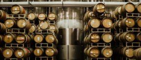 Barrels in the barrel room at LangeTwins
