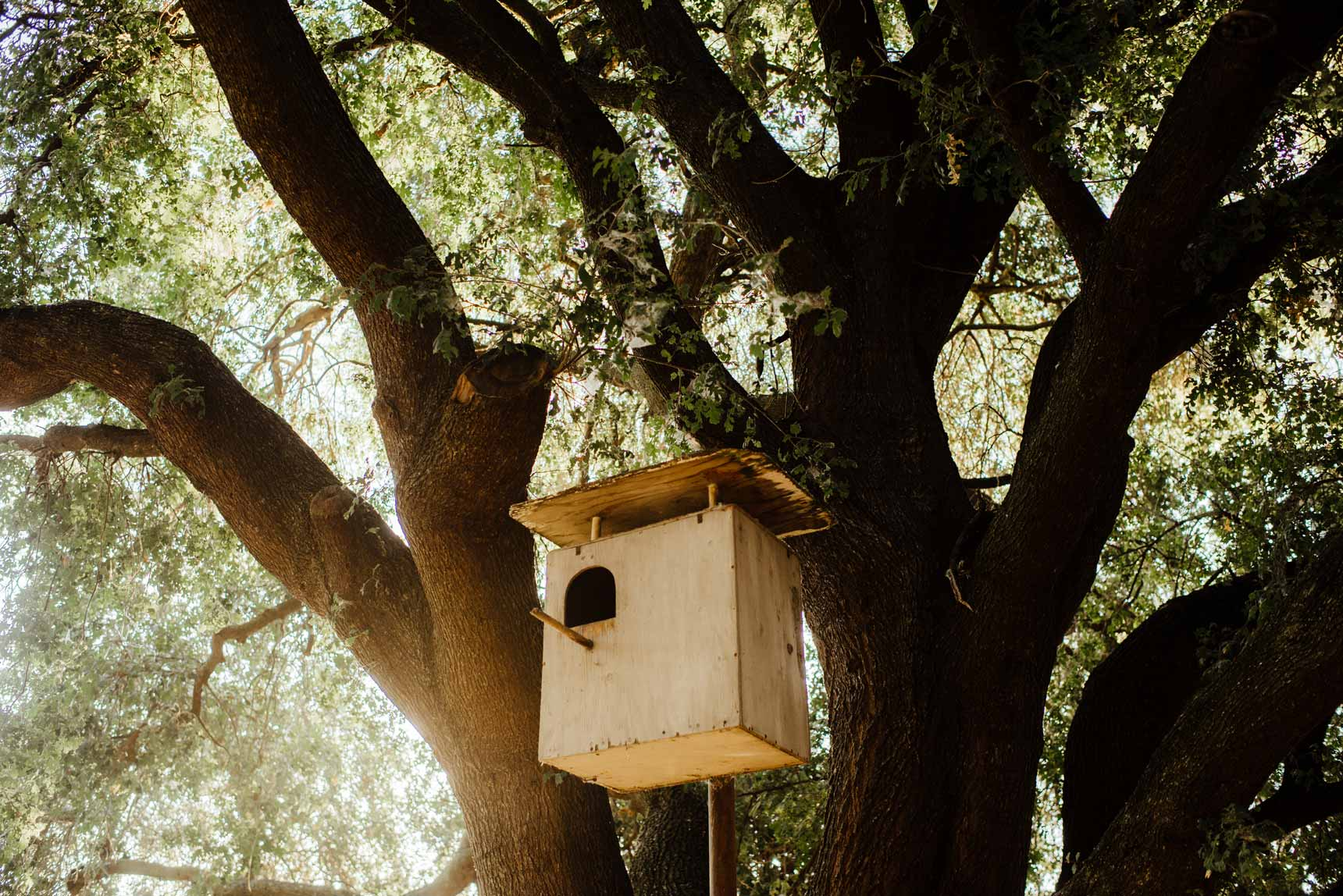 A birdhouse at sandpoint