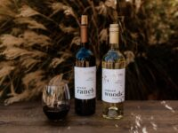 Single Vineyard Wines